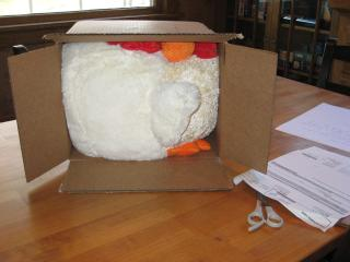 box-rooster.jpg